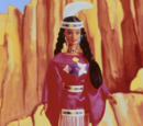 Native American Barbie Doll (12699)