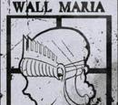 Стена Мария