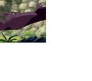Fantasy Sharptooth Flyer