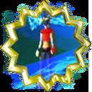 Badge-13-6.png
