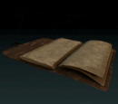 Pages of the Ledger