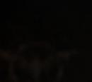 Jeffrey Mace (Life-Model Decoy)