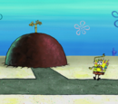 Patrick Star's House/gallery/House Worming