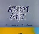 The Atom Ant/Secret Squirrel Show
