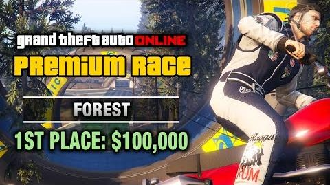 Stunt - Forest
