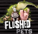 The Flushed Pets/Gallery