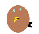 Dawid Bird