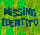 Missing Identity (transcript)