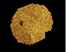 Doubloon.png