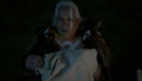 TO408-002-Shaman-Baby.png