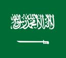 Sistema de Ligas de Arabia Saudita