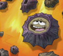Unnamed barnacle
