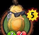 Body-Gourd