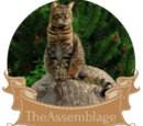 The Assemblage