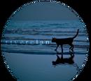 RiverClan (Hitachiinz)