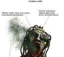 Чума Зомби