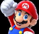 Mario (Canon)/Metal Mario875