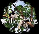 WillowClan (Chocolatespike1)