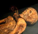 Der Ötzi-Fluch