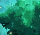 Arcturus Forest