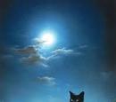Starlitmoon212/NightClan