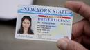 Mildred Wisnewski's NY Driver License.png