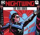 Nightwing: The New Order/Covers