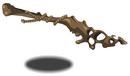 A Dino Bone.png