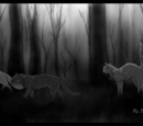 ThunderClan (Uncomplicated)