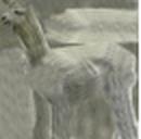 Alpaca Shorn.png
