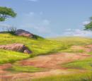 Back Lands