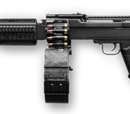 RPD Custom