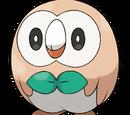 TheFoxyRiolu/Pokémon Sun and Moon Elimination Game (ROUND TROIS!)