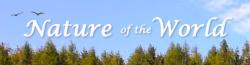 Nature of Toronto Wiki