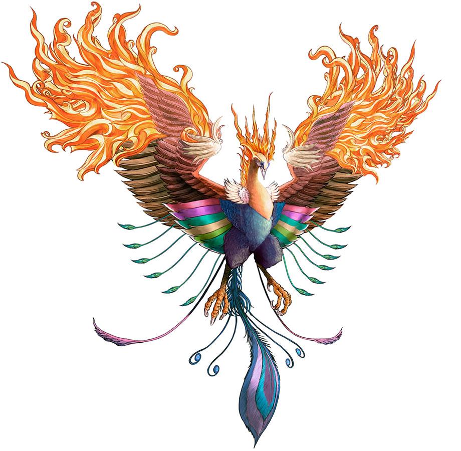 http://img3.wikia.nocookie.net/__cb20100320002001/finalfantasy/images/6/6d/Cc-phoenix.jpg