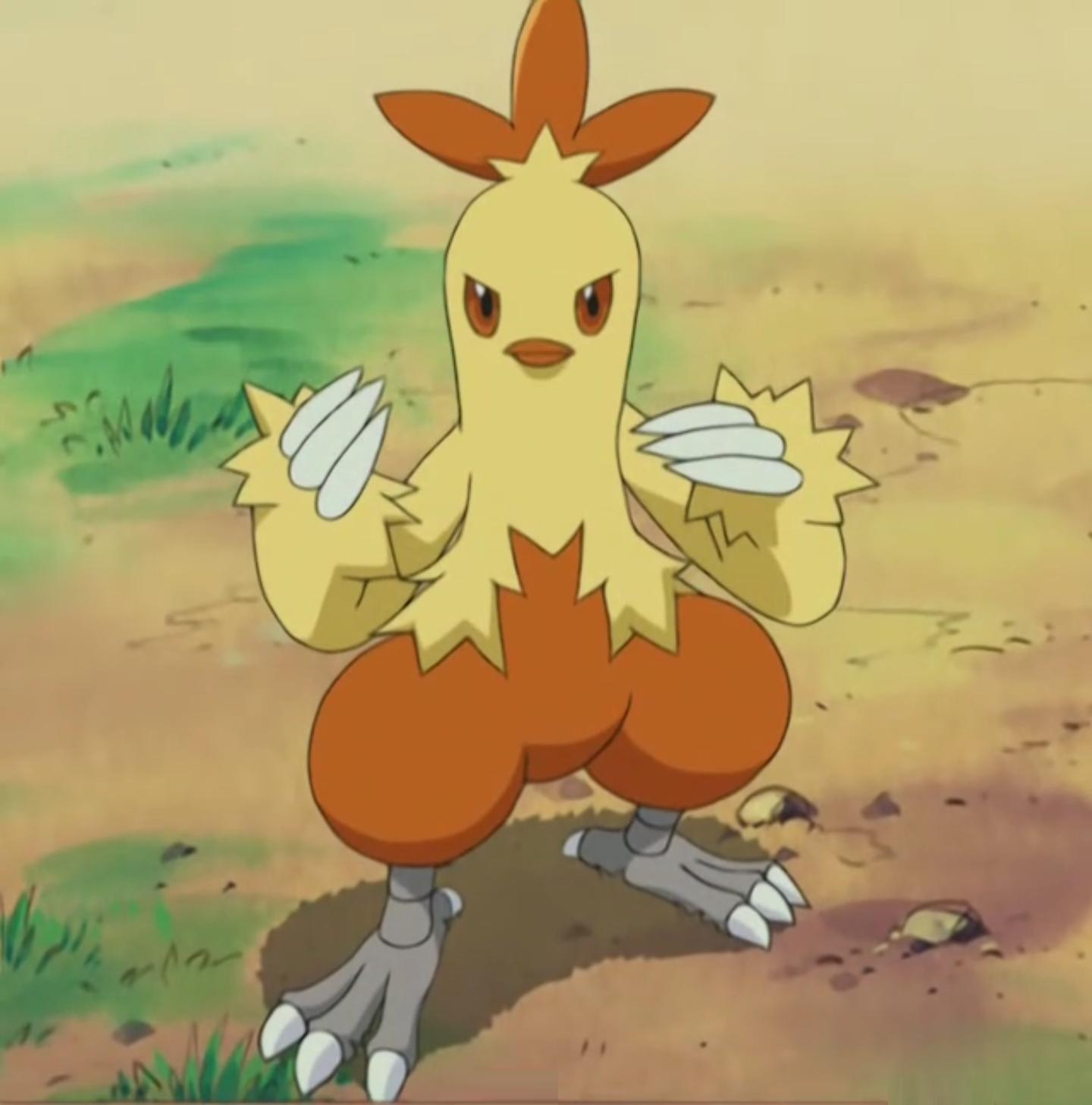 Nurse Joy Combusken Pokemon 9. Sezon 17. Bölüm İzle