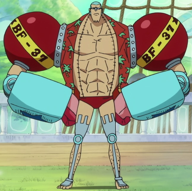 Franky - The One Piece Wiki - Manga, Anime, Pirates, Marines, Treasure, Devil Fruits, and more